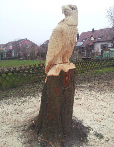 Adler 17