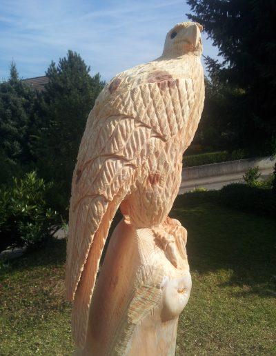 Adler 5