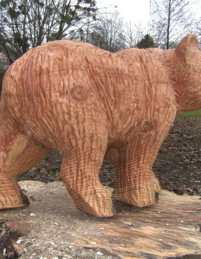 Bären-19