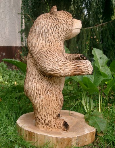 Bären-25
