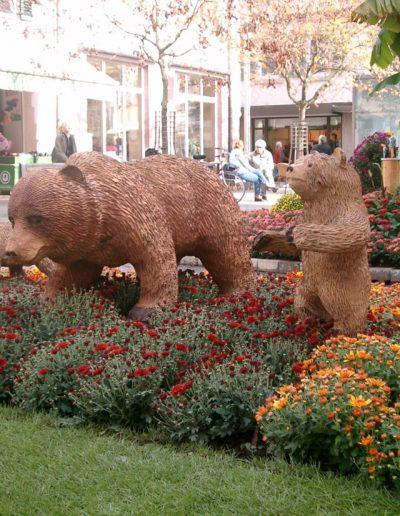 Bären-5