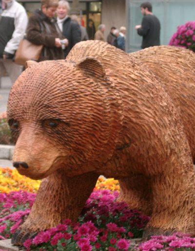 Bären-6