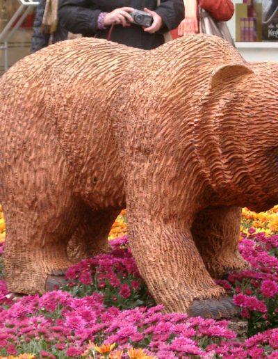 Bären-8