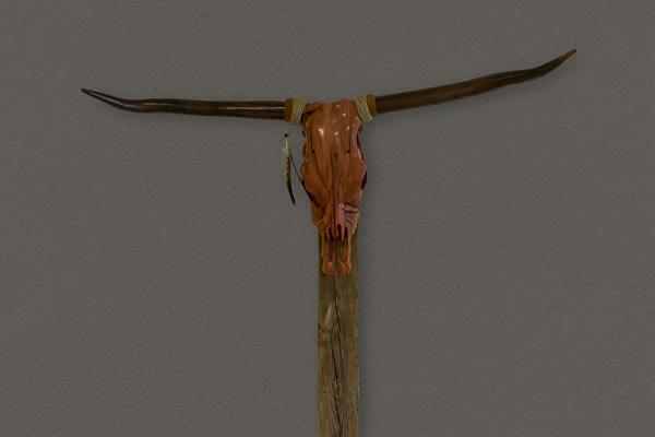 longhorn-Bearbeitet