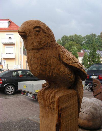 s.Vögel-14